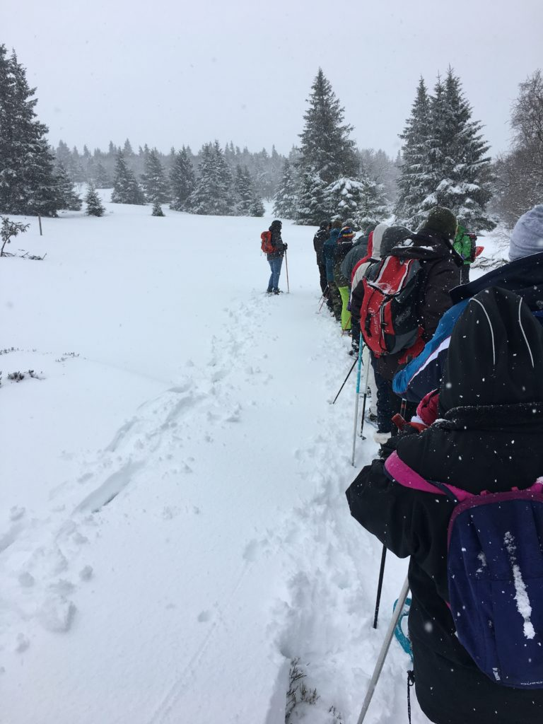 Randonnée en raquettes à neige