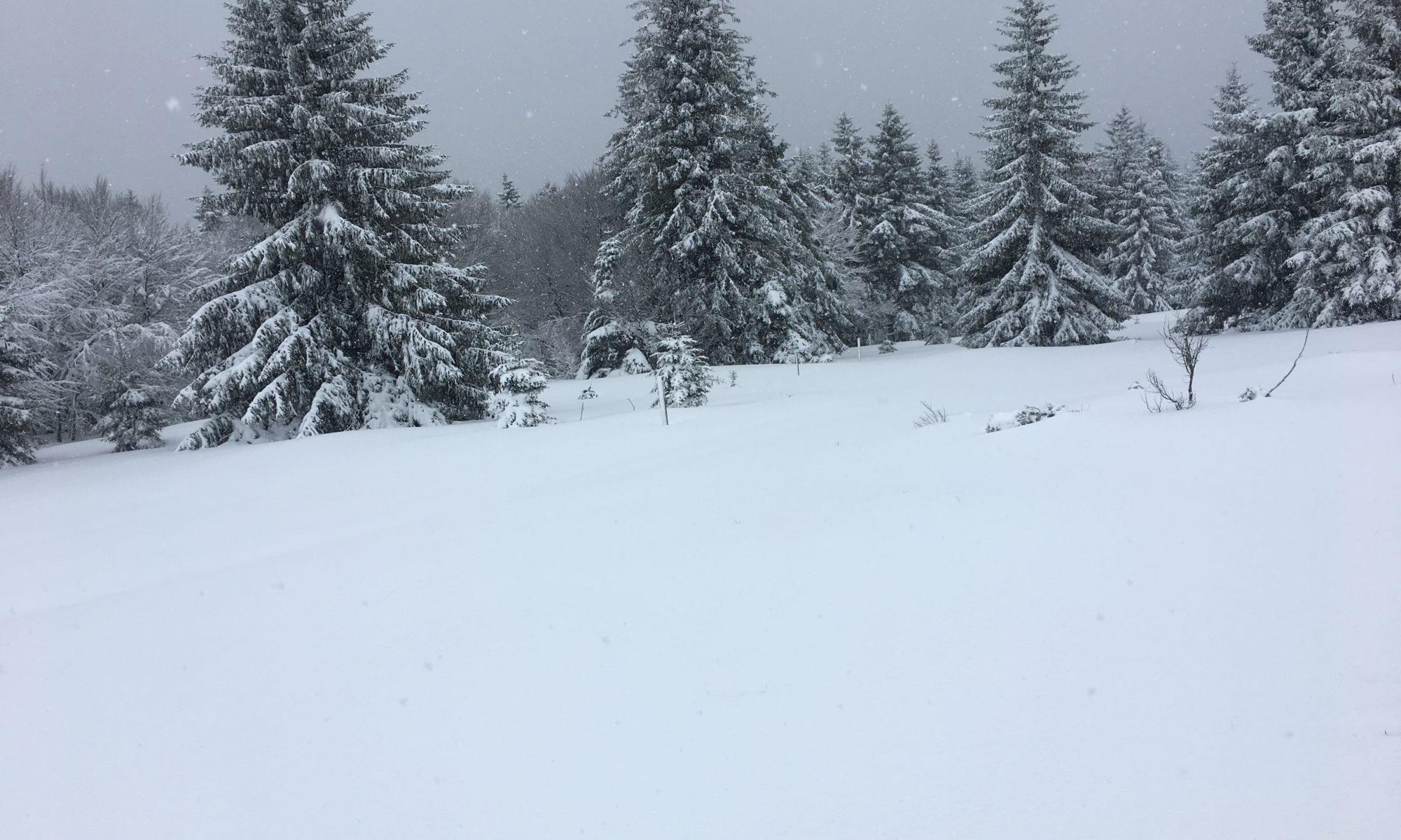 Sortie raquettes à neige